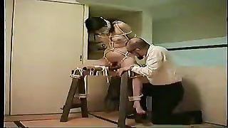 Japanese Video 343 Document BDSM Wifey  Seek Information From Torment